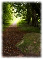 path_to_growing_prosperity