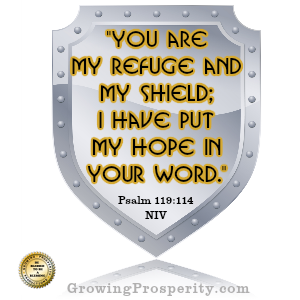 You are my shield